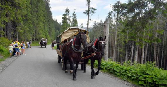 Tłumy w Tatrach to niejedyny problem. Największe grzechy turystów - Kobieta w INTERIA.PL